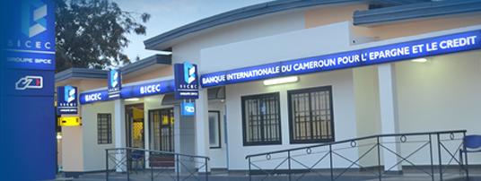 Les banques du Cameroun, leur capital et leurs actionnaires