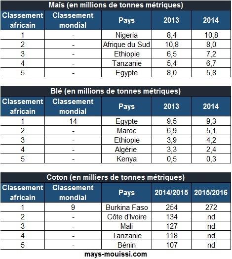 Classement des pays africains producteurs de maïs, de blé et de coton