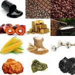 Afrique : Classements des pays producteurs de matières premières